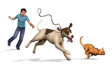 Животные для симс 4 питомцы скачать бесплатно питомцев для sims 4.