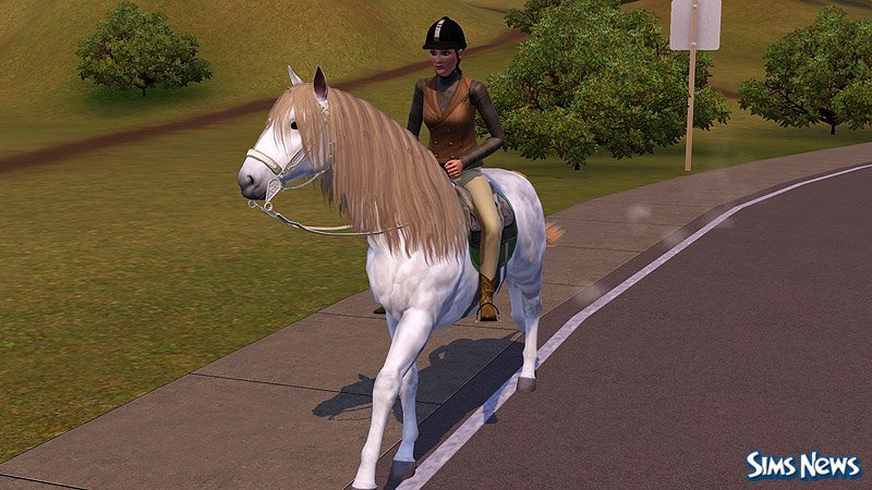 Играть прическа лошадей