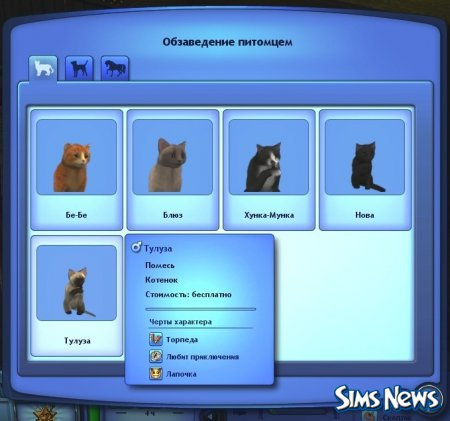 ��� ������� �������? ������ ��� �������� �������� � The Sims 3 �������
