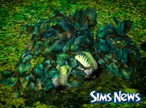 ����������� � The Sims 3