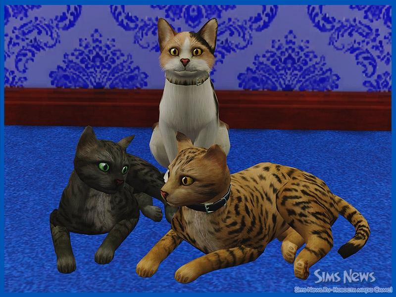 Собаки в The Sims 3 Питомцы (Симс 3 Собаки - Большая) 5