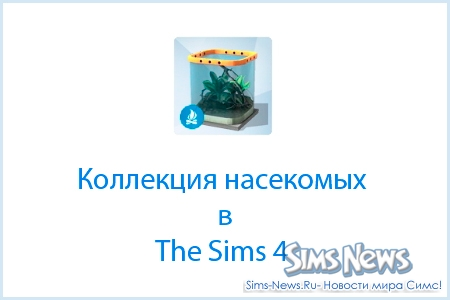 ��������� � The Sims 4. �������� ���������