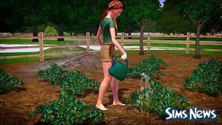 Как вырастить превосходное растение симс 3